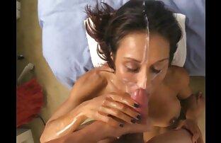 Gatto sesso anale per la prima volta video selvatico è una cagna passione